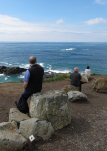 039d Cliff Edge Visitors