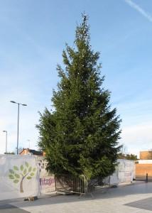 047d Xmas Tree Barrier 5